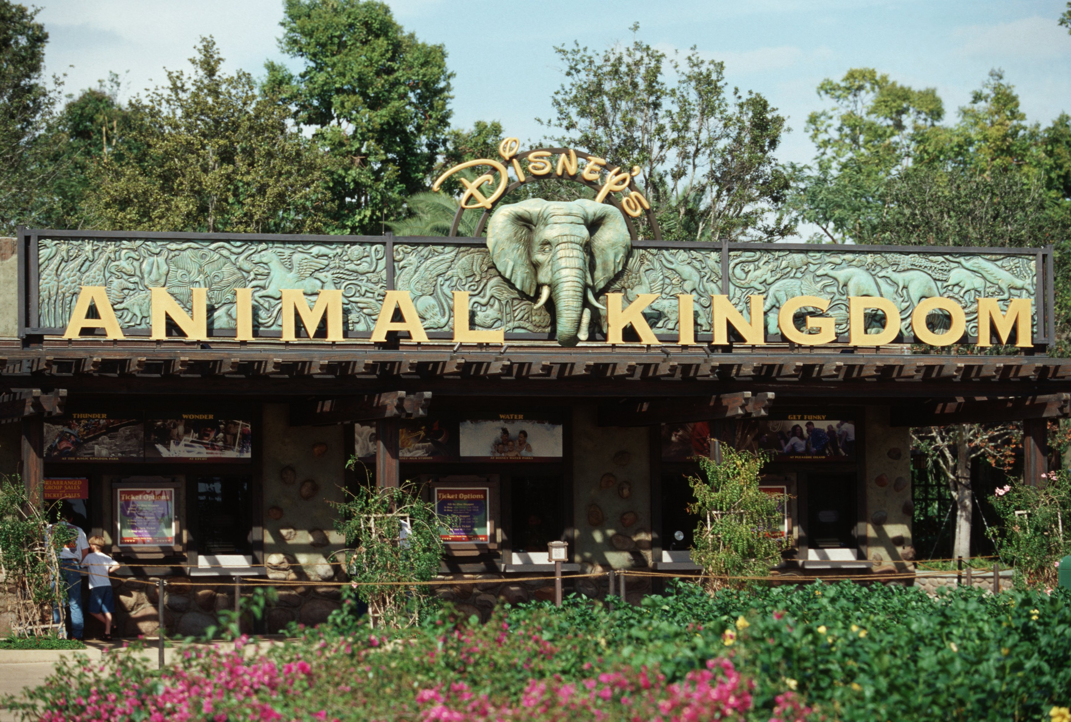 New Disney's Animal Kingdom Theme Park Guidemaps