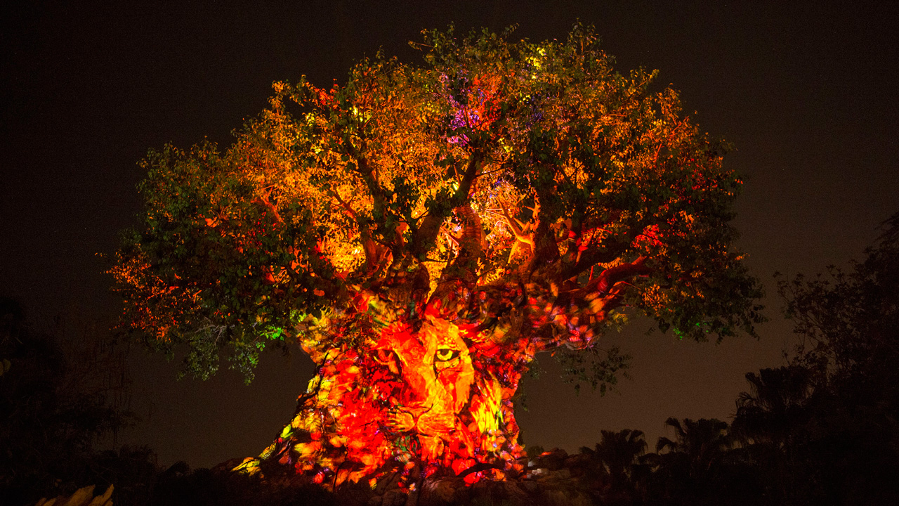 First-Ever Night Experiences at Disney's Animal Kingdom Begin May 27