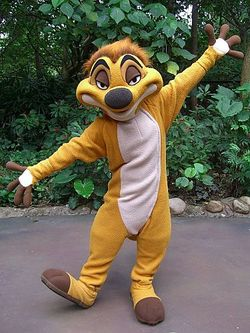 Timon Character Meet Coming to Discovery Island at Disney's Animal Kingdom