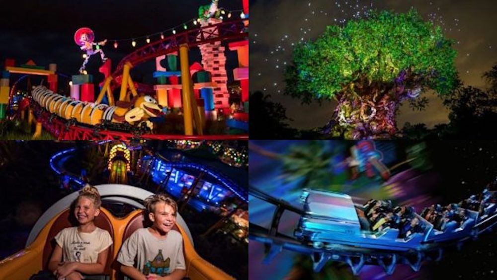 Disney After Hours Tickets Now Available For Magic Kingdom, Disney's Hollywood Studios & Disney's Animal Kingdom