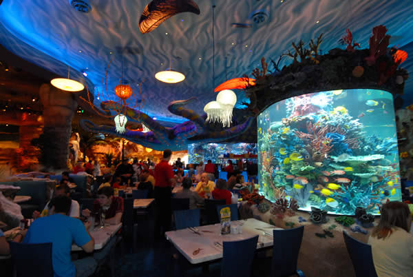 RECIPES – Epcot's Coral Reef – Braised Napa Cabbage