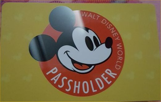 First Look at the New Walt Disney World Resort Gold Annual Pass
