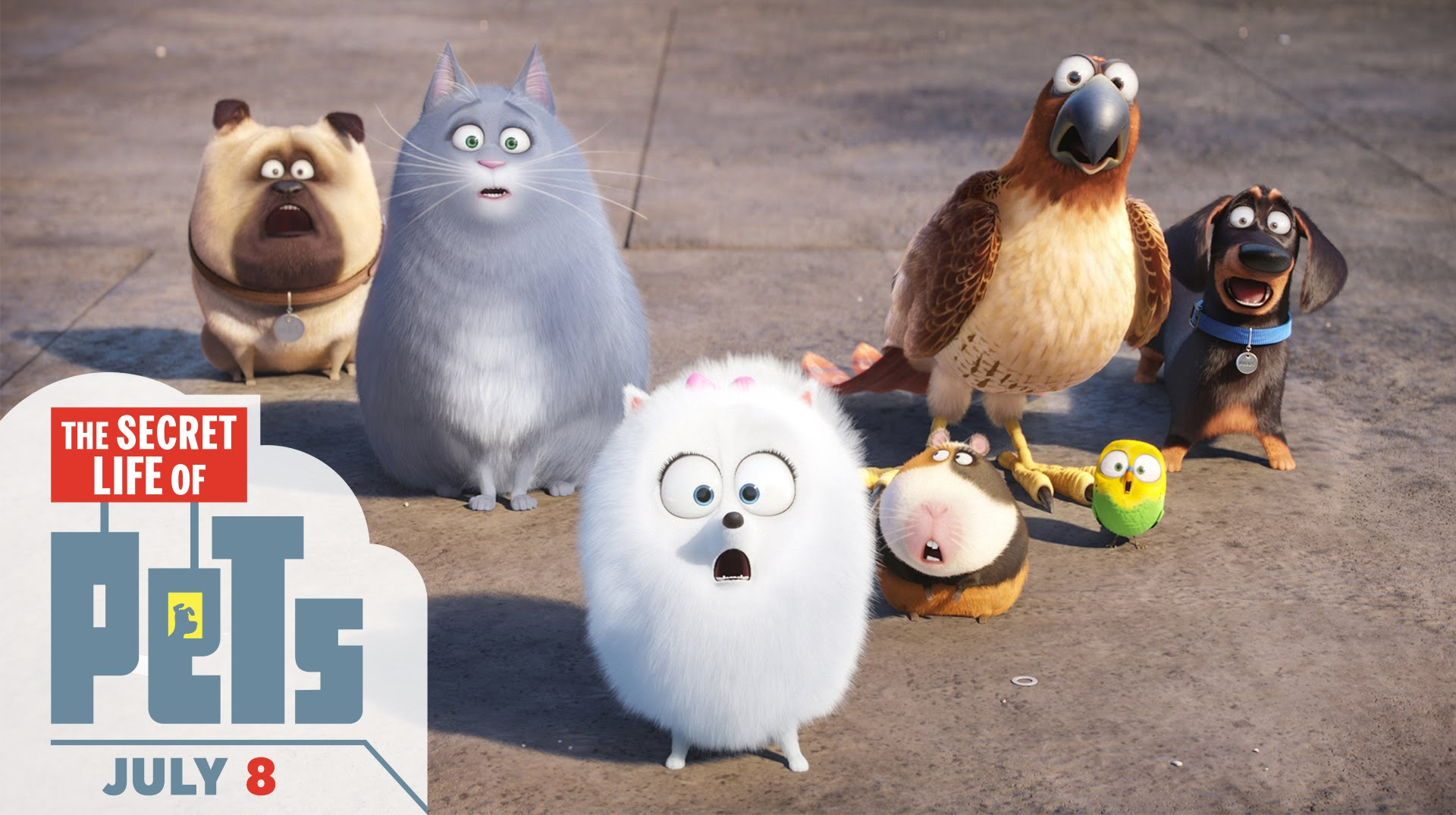 "New ""Secret Life of Pets"" Ride Coming to Universal Parks ?"