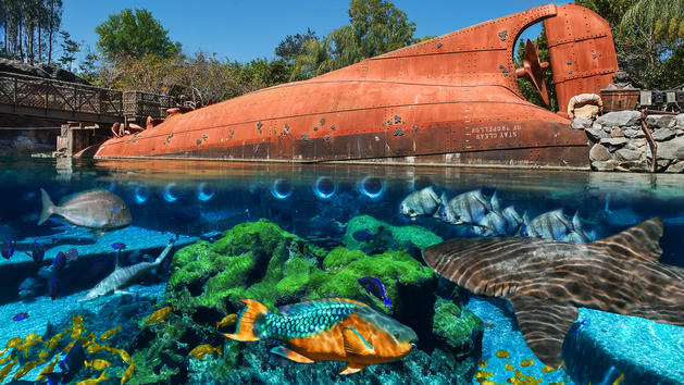Shark Reef Closing October 3 at Disney's Typhoon Lagoon
