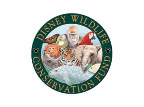 Wildlife Wednesdays: The Disney Conservation Fund Honors 2016 Conservation Heroes