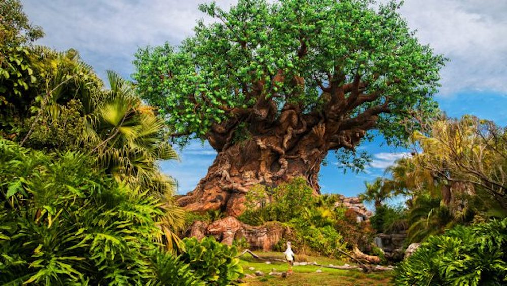 Exciting Multi-Day Celebration for 50th Anniversary of Earth Day to be Hosted at Disney's Animal Kingdom Park
