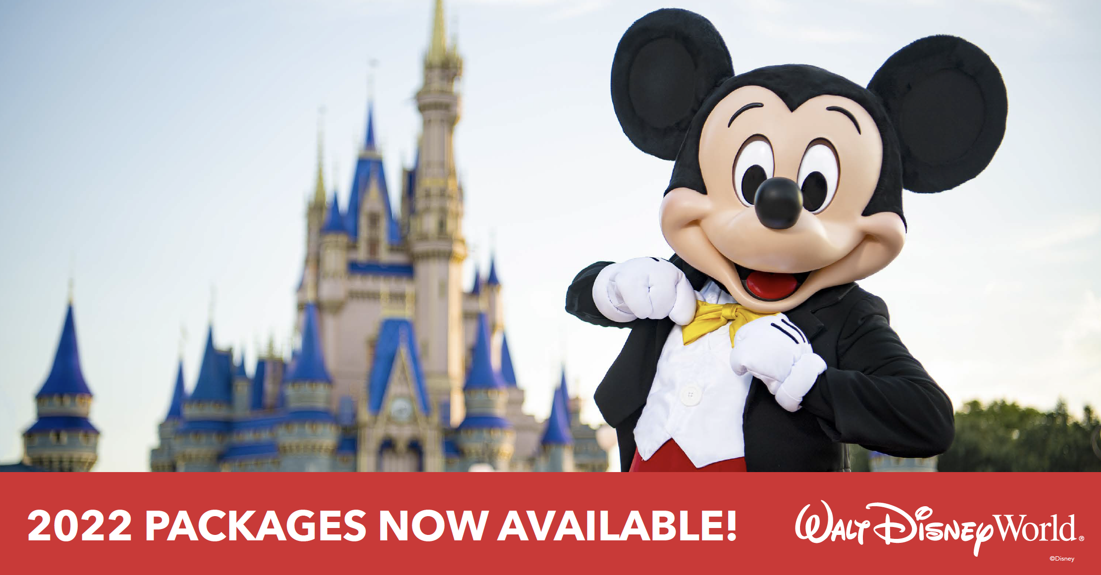 Walt Disney World Resort 2022 Vacation Packages Are Now Available!